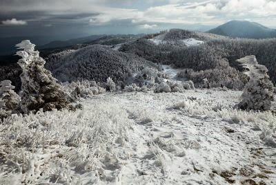 fenomena es Slovenia (7)