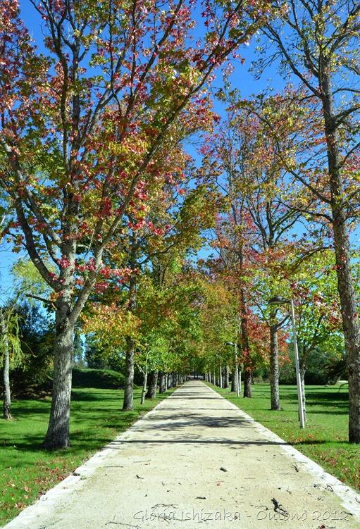 Glória Ishizaka - Folhas de Outono - Portugal 27