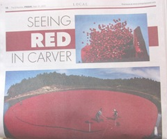 cranberry seeing red in carver newspaper. 9.21.2012