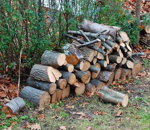 10. woodpile-kab