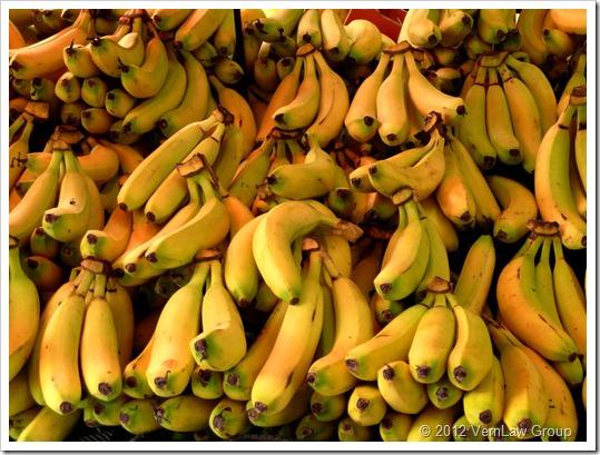 BananasP1030587