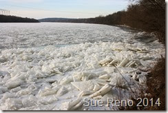 Ice on the Susquehanna River, 2/2014, by Sue Reno, Image 14