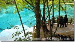 五花海2-九寨沟 Five Flower Lake 2-JiuZhai Valley National Park
