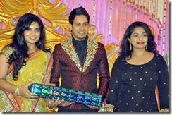 bharath_jeshly_marriage_reception_photos