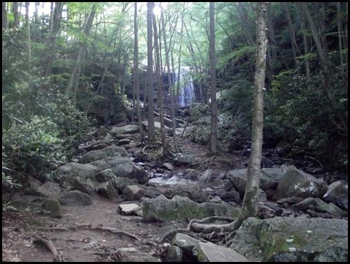Ohiopyle State Park 102