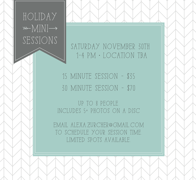 holiday mini sessions copy