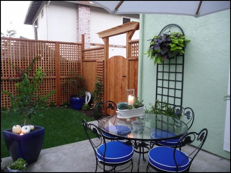 Backyard 013 (800x600) (800x600)