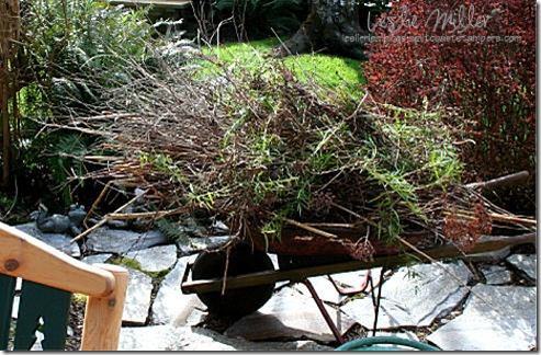 garden-mar08-wheelbarrow-loaded-2