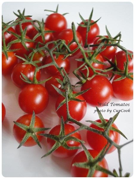 tomato (30)