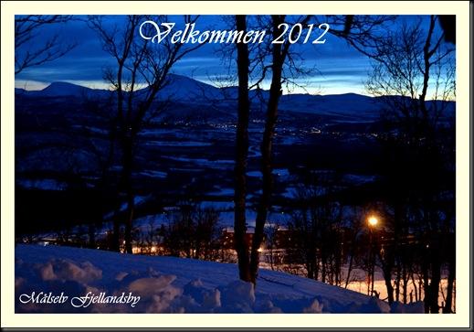 nyttår 2012