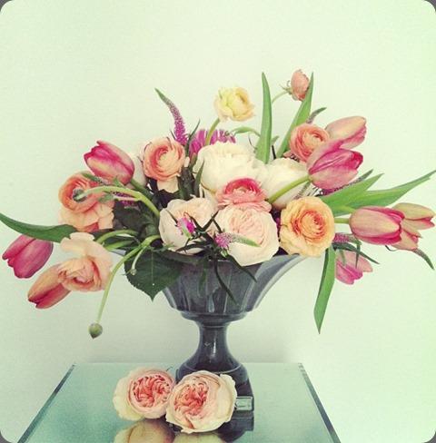 599980_10151428768669144_746680499_n tulip lesley