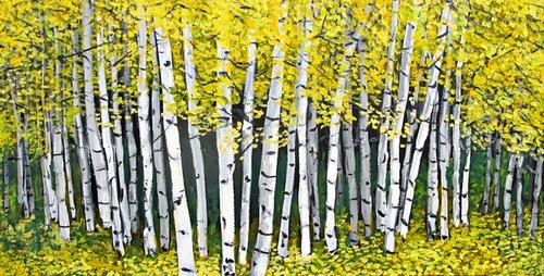 birch-trees-paul-crimi