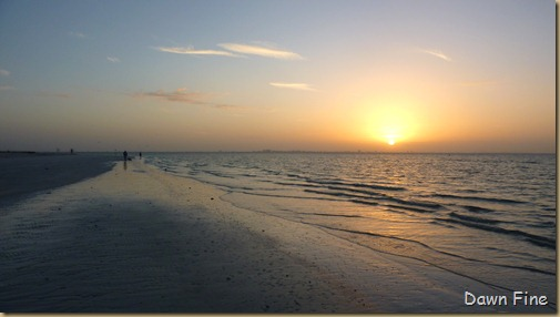 morning sanibel_013