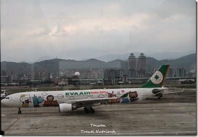 松山機場觀景台 (18)