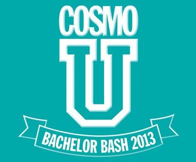 bachelor bash 2013