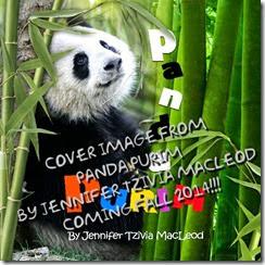 Panda Purim, by Jennifer Tzivia MacLeod