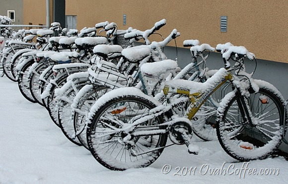 winter2011-7