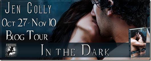 In the Dark Banner 851 x 315