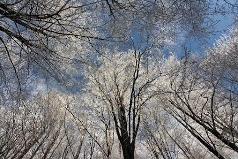 ... klasický zimný pohľad ...