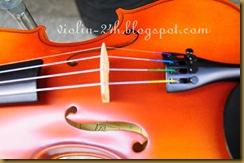 ban dan violin 3