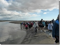 Morecambe Bay Walk (41)