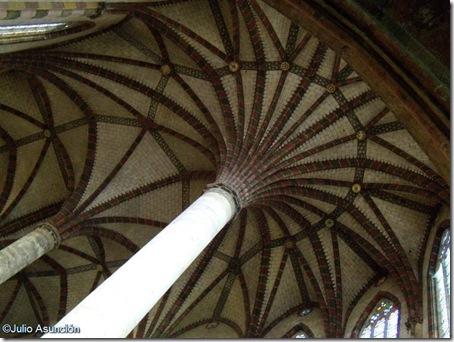 La palmera - convento de los Jacobinos - Toulouse