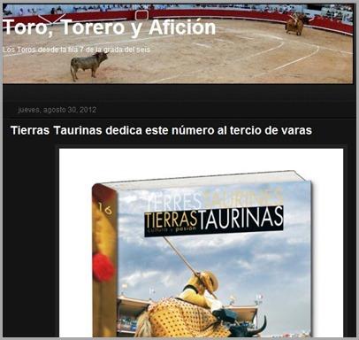 Toro, torero y aficion