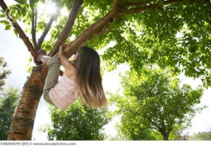 girl_climbing_a_tree_fan2046791