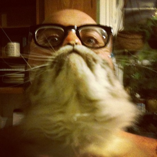 Barbas de gato (7)