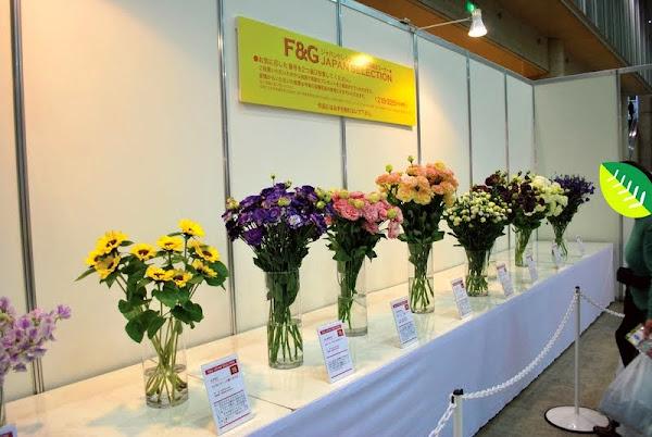 flowerg_4.jpg