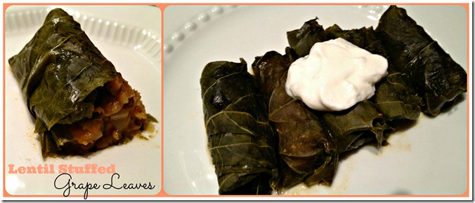 lentil stuffed grap leaves