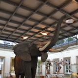 001-05_10_13-Rosensteinmuseum-28.jpg