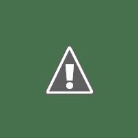 Статья Тирасполь с ошибками.jpg