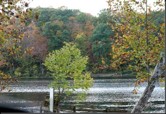 Lake_Alma10