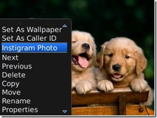 Instigram-para-BlackBerry