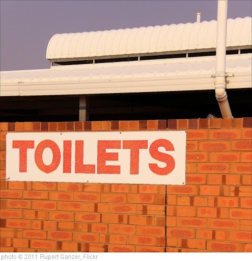 'toilets' photo (c) 2011, Rupert Ganzer - license: http://creativecommons.org/licenses/by-nd/2.0/