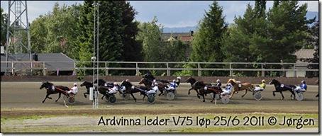 2011-25-6-V75-2pl_05