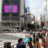 matt taking a photo at the shibuya crossing in Shibuya, Tokyo, Japan