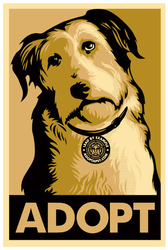 Original signed and numbered (by Shepard Fairey) gold ADOPT prints and gold ADOPT stickers are still available!