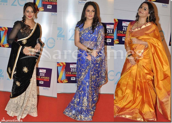 Sarees_Zee_Cine_Awards_2013(2)
