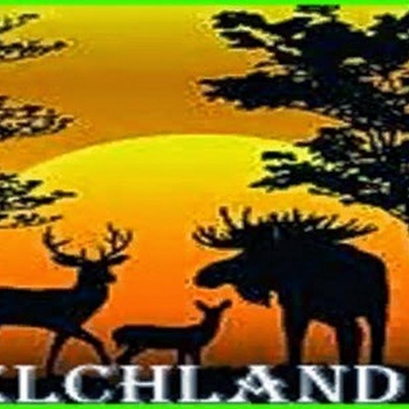 Farming simulator 2015 - Elchland v 5.5