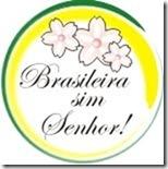 bra_sim_sr_logofinal-1