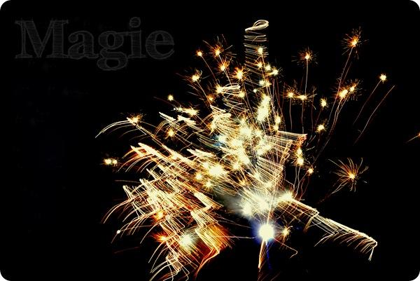 ebew KW 01 MAGIE