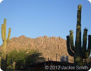 Arizona Spring 2012 240