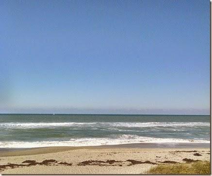 Nees 95th d more beach