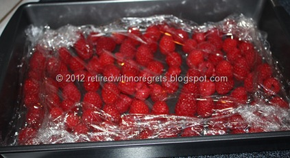 Driscoll's Raspberries - ready for freezer