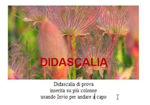 didascalia-blogger[5]
