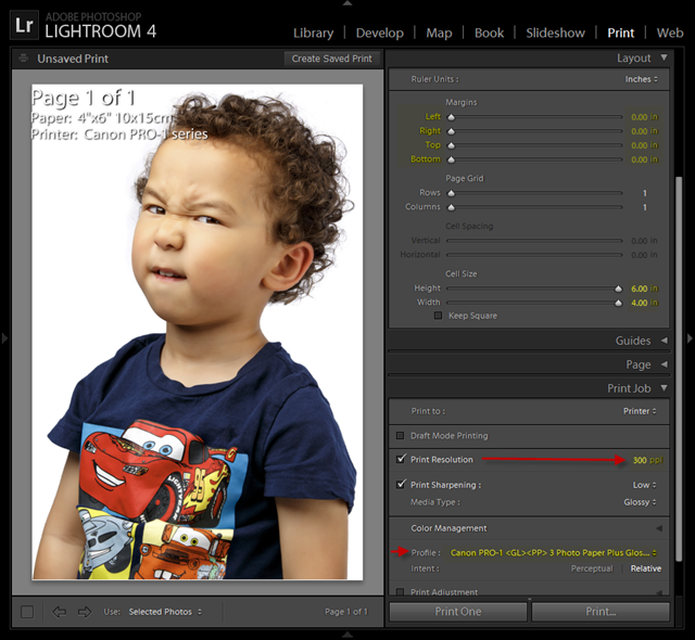 Lightroom Canon PRO-1 Glossy Settings