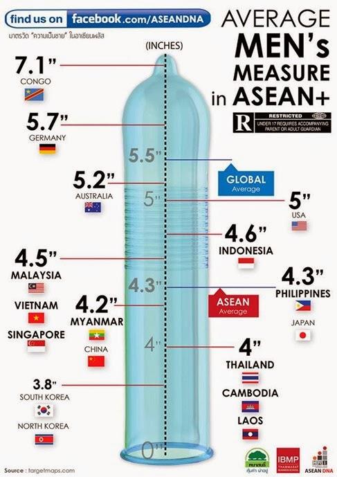 ASEAN Penis Size