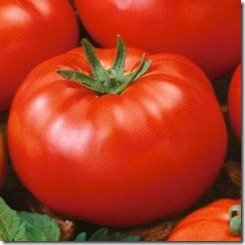 eco-friendly-organic-garden-beefsteak-tomatoes